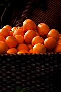 Orange Metal Prints - oranges in basket Rome italy Metal Print by Xavier Cardell