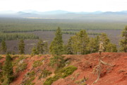 Deschutes Prints - Oregon Landscape - View from Lava Butte Print by Carol Groenen