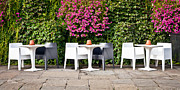 White Chairs Framed Prints - Outdoor cafe Framed Print by Tom Gowanlock