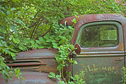 Car Window Framed Prints - Overgrown Rusty Ford Pickup Truck Framed Print by John Stephens