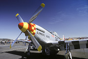 P-51 Mustang Photos - P-51 Mustang by Joe  Palermo
