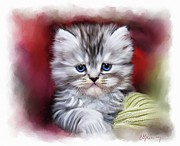 Cat Portraits Prints - Pet Cat Portrait Print by Michael Greenaway