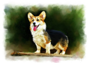 Corgis Framed Prints - Pet Dog Portrait Framed Print by Michael Greenaway