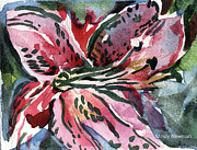 Green Day Drawings Originals - Pink Day Lily by Mindy Newman