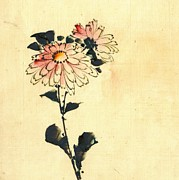 Sketchbook Posters - 2 Pink Flowers 1840 Poster by Padre Art