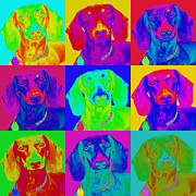 Op Art Digital Art Posters - Pop Art Dachshund Poster by Renae Frankz