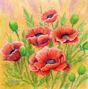 Poppies Field Paintings - Poppies by Frances  Dillon