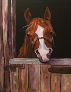 Horse Paintings - Prince In Retirement by Diane Kraudelt