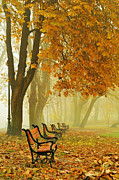 Autumn Scene Prints - Red benches in the park Print by Jaroslaw Grudzinski