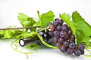 Italian Wine Photo Framed Prints - Red wine Framed Print by Joana Kruse
