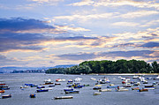 Anchor Posters - River boats on Danube Poster by Elena Elisseeva