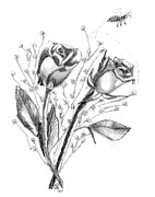 Bee Drawings - Roses and Bee by Gail Schmiedlin