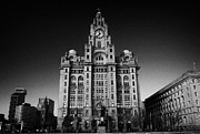 Liverpool Prints - Royal Liver building one of liverpools three graces listed buildings on the liverpool waterfront  Print by Joe Fox