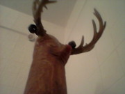 Deer Sculpture Originals - Rudolph the Red Nosed Cane Deer by Joe Chandler