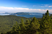 Juans Photos - San Juan Islands in Summer by Matt Tilghman