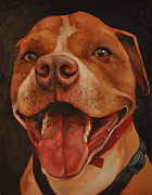 Pitbull Originals - Savannah by Jackson Thilenius