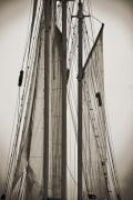South Carolina Digital Art Originals - Schooner Pride Tall Ship Charleston SC by Dustin K Ryan
