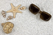 Sunglasses Photo Framed Prints - Seastar And Shells Framed Print by Joana Kruse