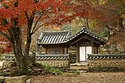 Buddhism Art - Seonamsa in Autumn by Michele Burgess