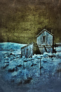 Shack Prints - Shack in Infrared Print by Jill Battaglia