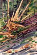 Plein Air Art - Shattered Pine by Donald Maier
