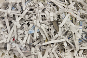 Office Space Prints - Shredded Paper Print by Blink Images