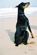 Dog Beach Print Posters - Sing To Me Poster by Rita Kay Adams