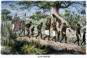 Granger - Slave Trade, 19th Ce...