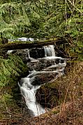 R J Ruppenthal Art - Small Stream Waterfall by R J Ruppenthal