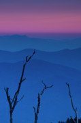 Vertical Abstract Art Posters - Smokies Sunset Poster by Andrew Soundarajan