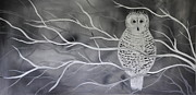 Black And White Owl Paintings - Snowy Owl by Preethi Mathialagan