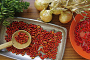 Rustic Photos - Spicy still life by Carlos Caetano