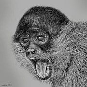 Costa Digital Art Prints - Spider Monkey 2 Print by Larry Linton