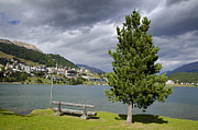 Wood Bench Prints - St Moritz in Switzerland Print by Mats Silvan