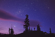 Stargazing Prints - Starry Sky Print by David Nunuk