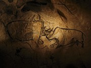 Rhinoceros Photo Posters - Stone-age Cave Paintings, Chauvet, France Poster by Javier Truebamsf