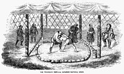 Sumo Framed Prints - Sumo Wrestling, 1853 Framed Print by Granger