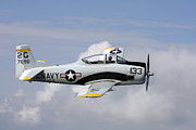 North American Aviation Photos - T-28 Trojan Trainer Warbird In U.s by Daniel Karlsson