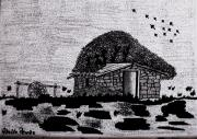 Shack Drawings Prints - Tapera Print by Adolfo hector Penas alvarado