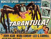 1955 Movies Photo Posters - Tarantula, John Agar, Mara Corday, 1955 Poster by Everett