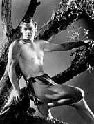 Johnny Framed Prints - Tarzan, Johnny Weissmuller, 1932 Framed Print by Everett