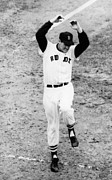 Red Sox Photo Posters - Ted Williams Of The Boston Red Sox Poster by Everett