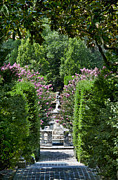 Crape Prints - The Elizabethan Gardens Print by John Greim