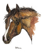 Head Drawings Prints - The Horse Portrait Print by Angel  Tarantella