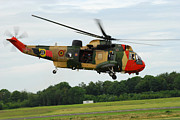 Helicopter Art - The Sea King Helicopter Of The Belgian by Luc De Jaeger