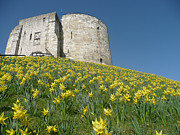 Yorkshire Photos - The Tower by Robert Gipson