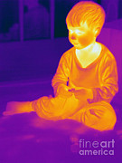 Electromagnetic Spectrum Photos - Thermogram Of A Boy by Ted Kinsman