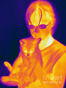 Human Being Posters - Thermogram Of A Girl And Cat Poster by Ted Kinsman