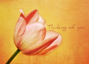 Northwest Art Prints - Thinking of you Print by Cathie Tyler