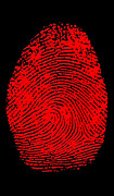 Criminal Investigation Prints - Thumbprint Print by Science Source
